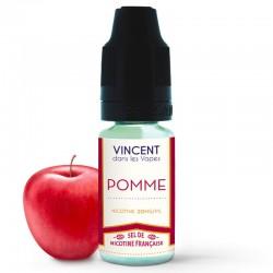 Sel des Nicotine Française Pomme - VDLV